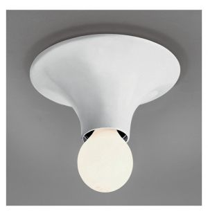 Teti Ceiling & Wall Light