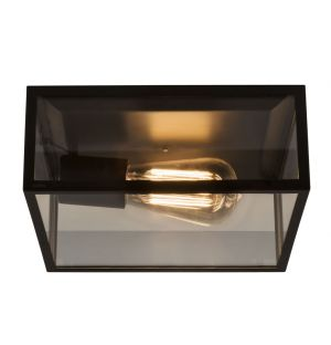 Bronte Exterior Ceiling Light