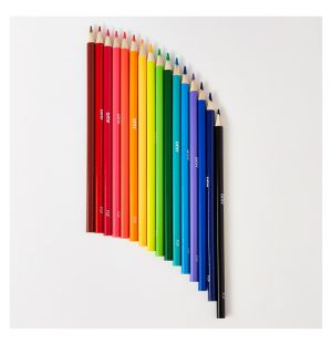 Coloured Pop Pencils Set Of 16