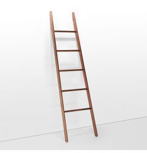 Walnut Ladder