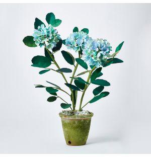 Hydrangea Paper Plant