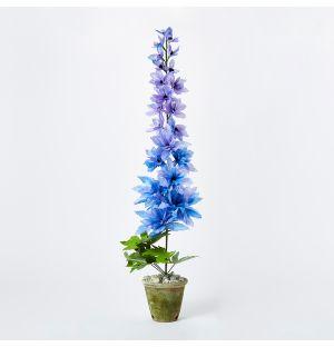 Delphinium Paper Plant