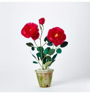 Floribunda Rose Paper Plant