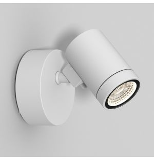 Bayville Single Spot Outdoor Wall Light