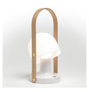 FollowMe Portable Light